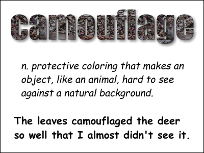 Camouflage cool word Sample